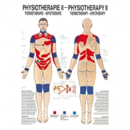 Physiotherapie II