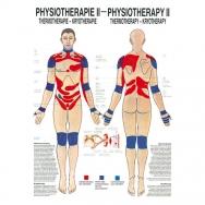 LEHRTAFEL 50 x 70 CM Physiotherapie II