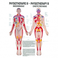LEHRTAFEL 50 x 70 CM Physiotherapie III